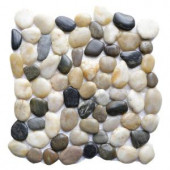 Islander Multi 12 in. x 12 in. Natural Pebble Stone Floor and Wall Tile (10 sq. ft. / case)-20-1-MLT 205932326