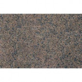 MS International Tropic Brown 18 in. x 31 in. Polished Granite Floor and Wall Tile (7.75 sq. ft. / case)-TGCTROPBRN1831 202194699