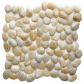 Islander Golden Sapphire 12 in. x 12 in. Natural Pebble Stone Floor and Wall Tile (10 sq. ft. / case)-20-1-GLD 205932321