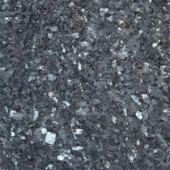 MS International Blue Pearl 12 in. x 12 in. Polished Granite Wall Tile (10 sq. ft. / case)-TBP1212 202508278