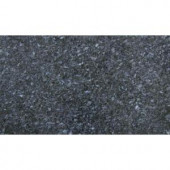 MS International Blue Pearl 18 in. x 31 in. Polished Granite Floor and Wall Tile (7.75 sq. ft. / case)-TGCBLUPRL1831 202194689