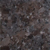 MS International Brown Antique 12 in. x 12 in. Polished Granite Floor and Wall Tile (10 sq. ft. / case)-TBRNANT1212 205762443