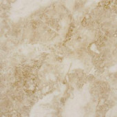 MS International Cappuccino 18 in. x 18 in. Polished Marble Floor and Wall Tile (9 sq. ft. / case)-TTCAPU1818P 202508304