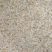 MS International Gold Rush 18 in. x 18 in. Polished Granite Floor and Wall Tile (11.25 sq. ft. / case)-TGLDRUS1818 202508276