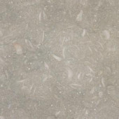 MS International Nova Verde 18 in. x 18 in. Honed Limestone Floor and Wall Tile (13.5 sq. ft. / case)-TNOVVER1818H 202508396
